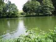 Rybnik, koupaliště v Černovicich
