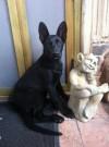 SONJA a SYLVIA, 20.srpna 2011