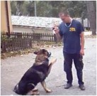 JASSAN z Dvořákova sadu, 22.listopadu 2009