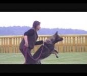 LESSI, LARRYS z Dvořákova sadu a Libuška, 18.června 2010, video