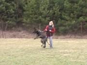 Poslední výcviková neděle v roce 2011, 18.prosince 2011