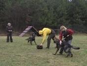 První výcviková neděle, 8.ledna 2012