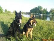 QWINNO z Dvořákova sadu a ROKI, 9.května 2011