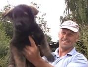 SANNY a SORBON z Dvořákova sadu před odchodem z domova, 5.července 2011