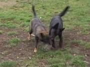 USSY a ULLA, 27.listopadu 2012
